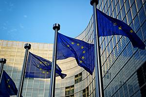 Belgium business facts: advantages and disadvantages