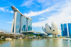 Singapore company setup requirements for different business entity types