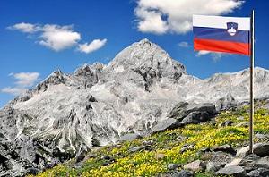 Slovenia business registration - pros and cons