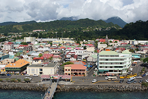 Dominica business registration guides