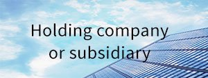 Holding company or subsidiary? cover