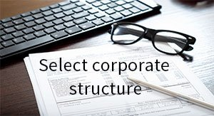 Select corporate structure