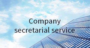 Company secretarial service