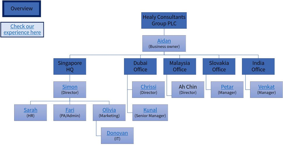 company overview chart