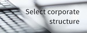 Select corporate structure cover