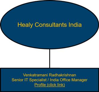 Healy Consultants India organisational chart